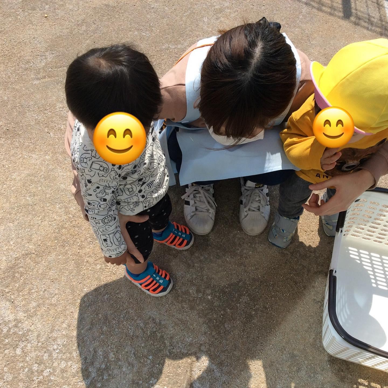 お外でだんごむしを発見しました。興味津々でずっと見つめていました。もりぐみさんは、お名前呼びをして手を挙げて元気いっぱいお返事をしてくれました。#舞多聞そらの保育園#神戸市#垂水区#舞多聞#小規模保育園#舞多聞100年の杜